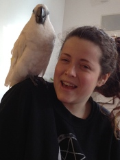 Annie's grand daughter, Molly, with their new bird Phoebe.