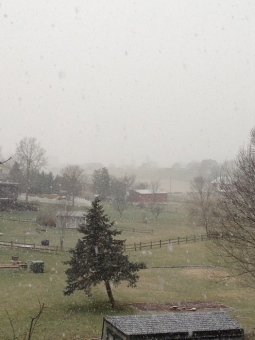 And the hills and silos were shrouded by snowflakes.