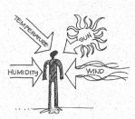 These factors affect human thermal comfort. (Image from the book Shiller, M. (2004). Mechanical and electrical systems. Chicago: Dearborn Financial Publishing.)