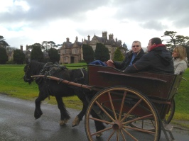 Carriage rides are available around the grounds.