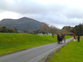 Landscape around Muckross House