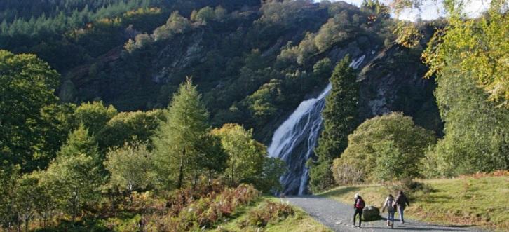 The waterfall (downloaded from www.powerscourt.ie).