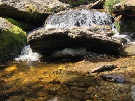 ...splash around on the rocks...